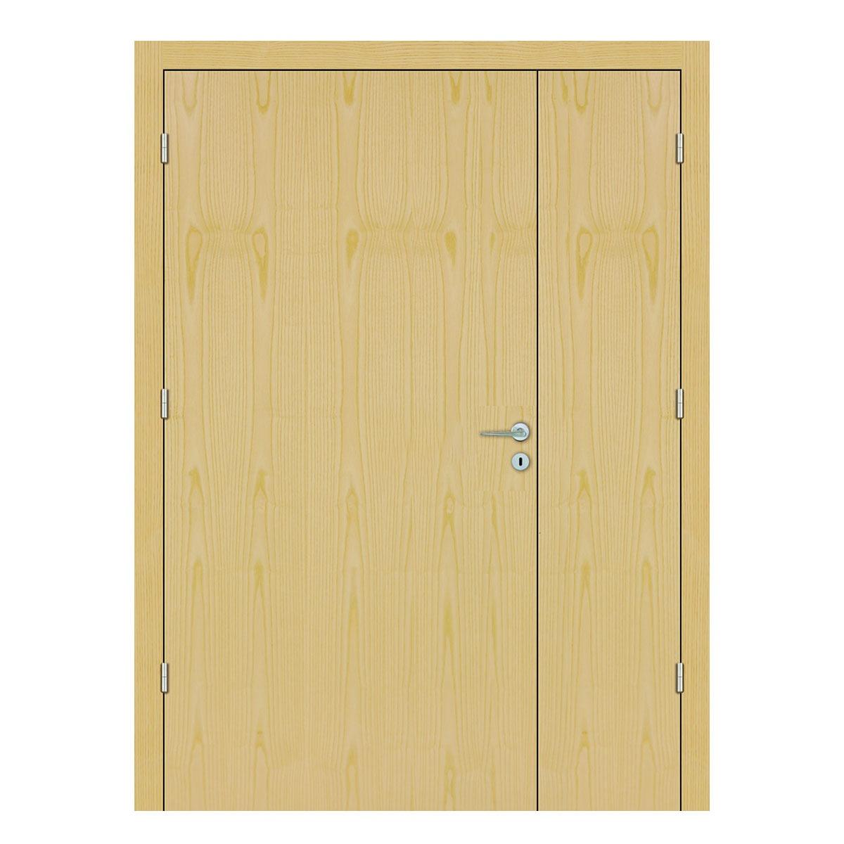 Ash Hospital Doors