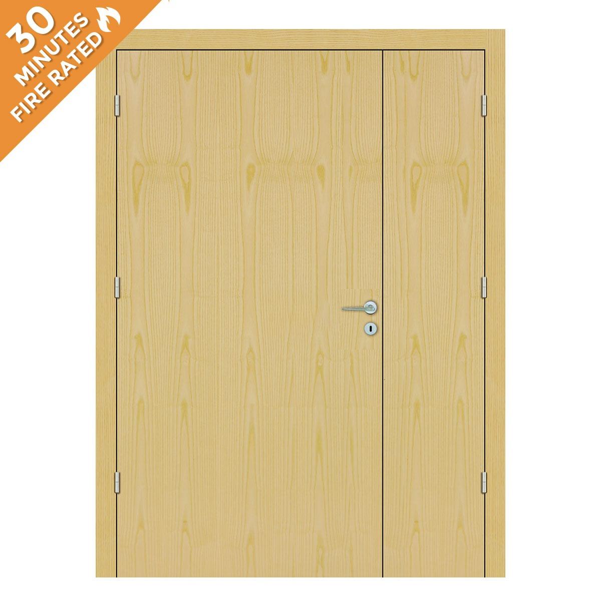 Ash Hospital Door FD30