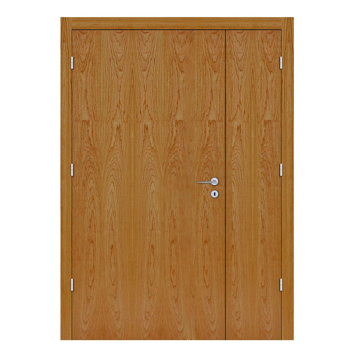 Cherry Hospital Doors