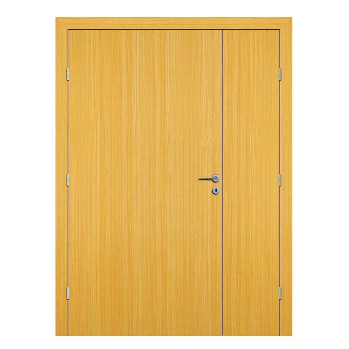 Koto Hospital Doors