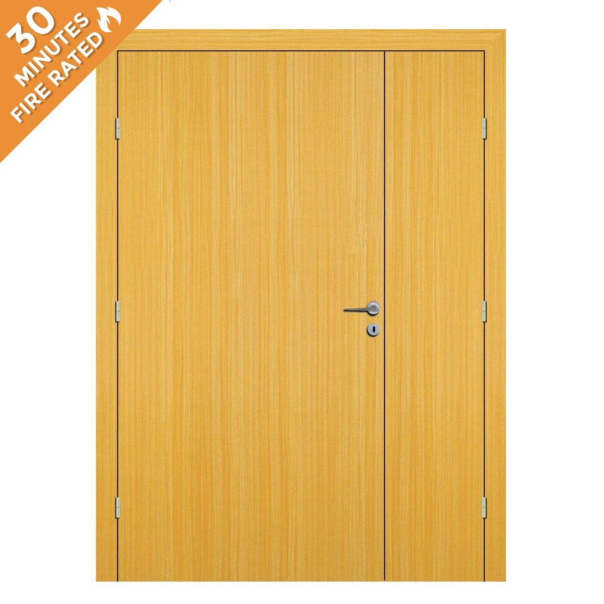 Koto Hospital Door FD30