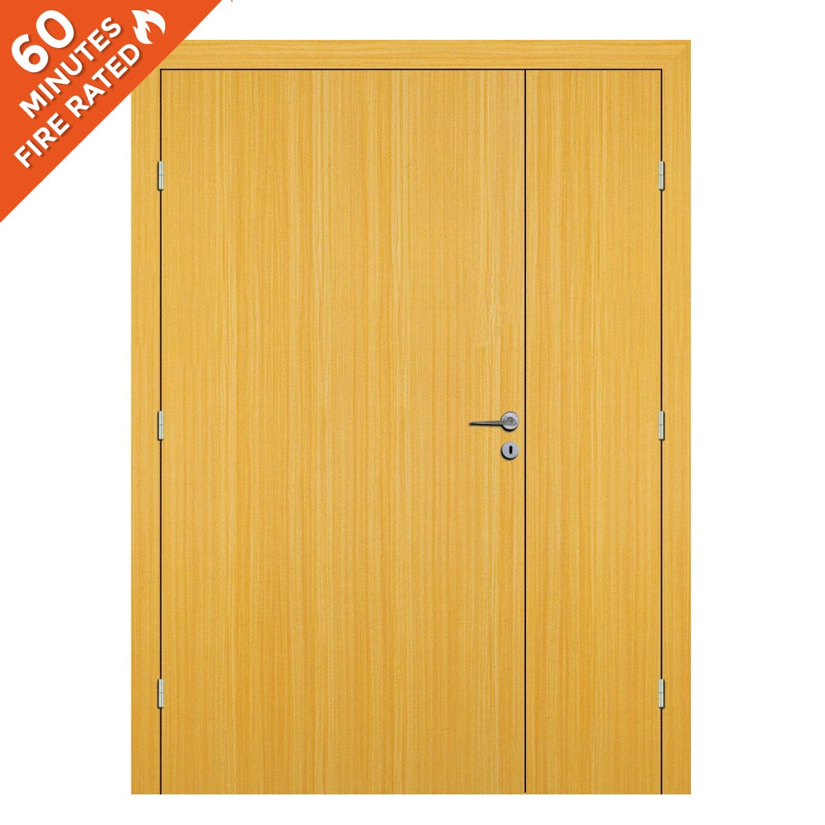 Koto Hospital Door FD60