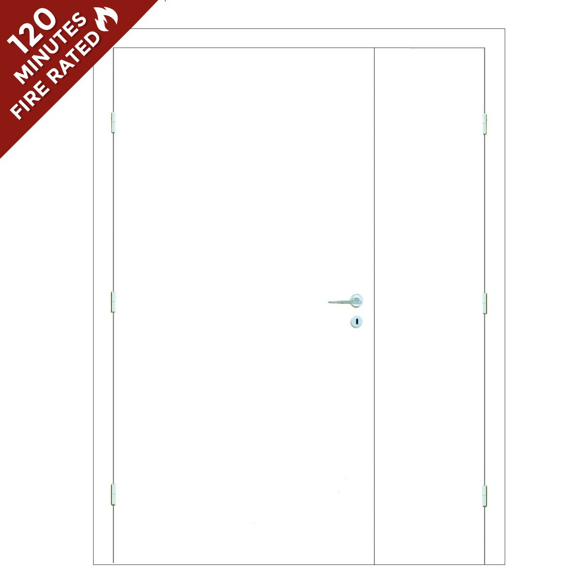 Paint Grade Hospital Door FD120