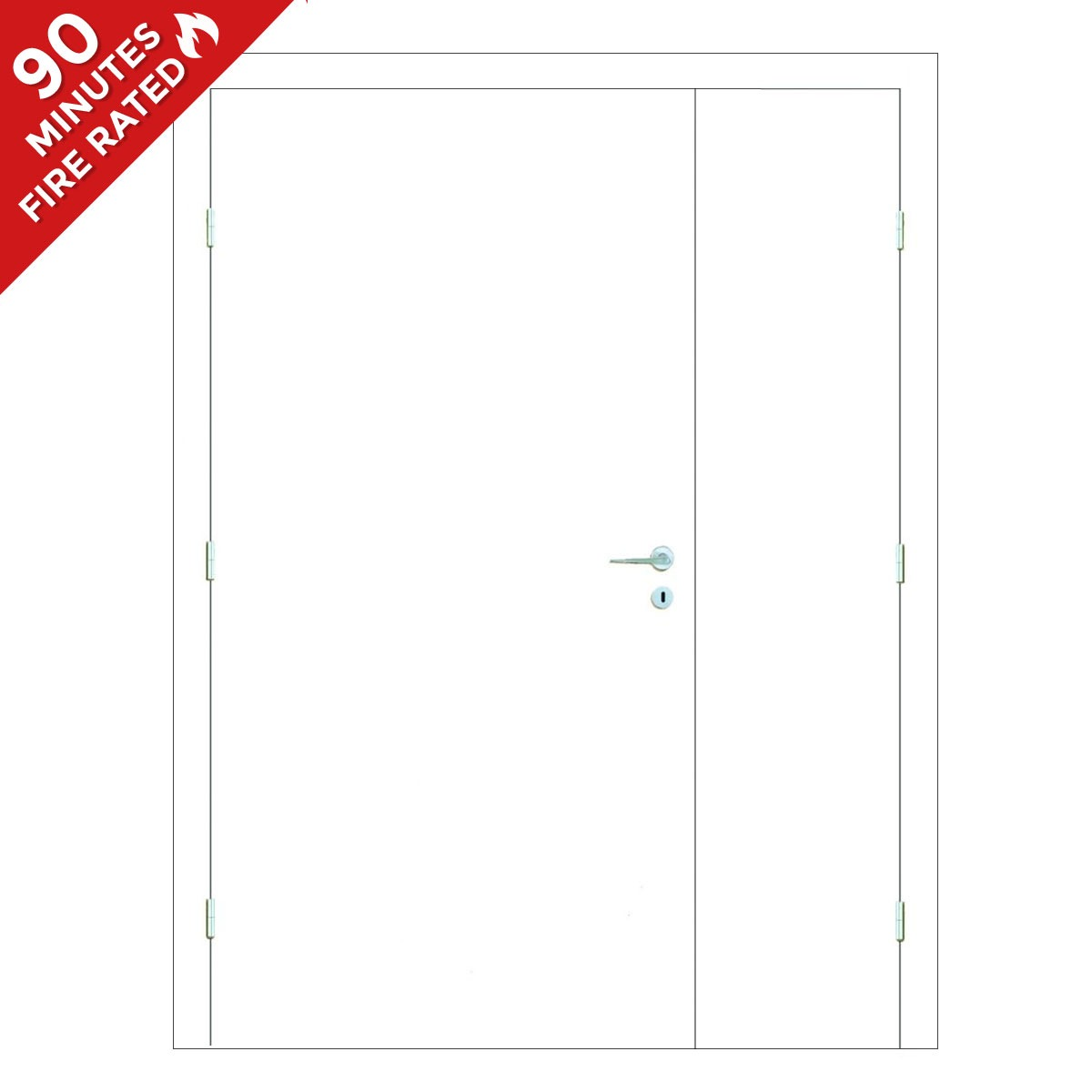 Paint Grade Hospital Door FD90